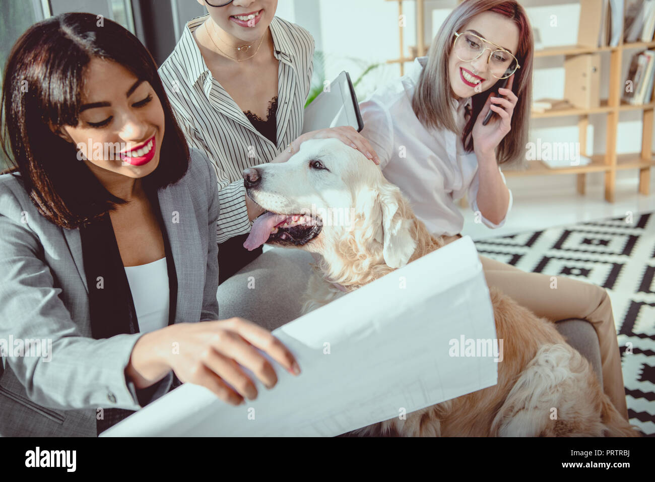 young multiethnic businesswomen in formal wear fooling around with dog at office - Stock Image