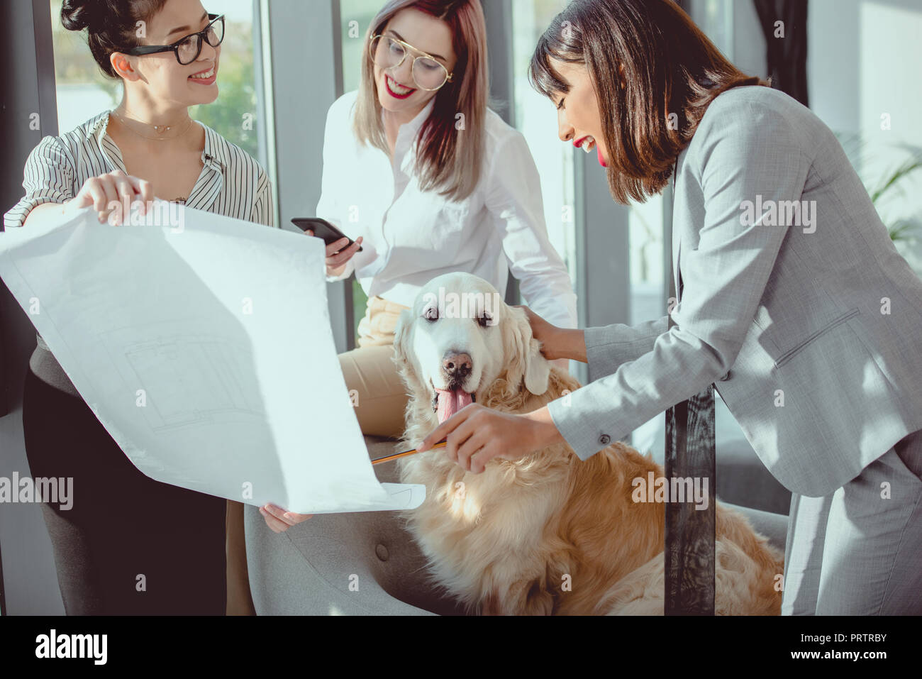 young multiethnic businesswomen in formal wear playing with dog at office - Stock Image