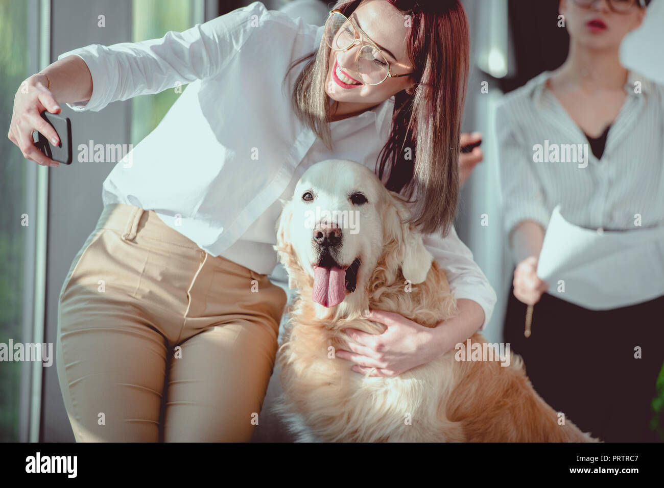 young caucasian businesswoman in formal wear taking selfie with dog at office - Stock Image