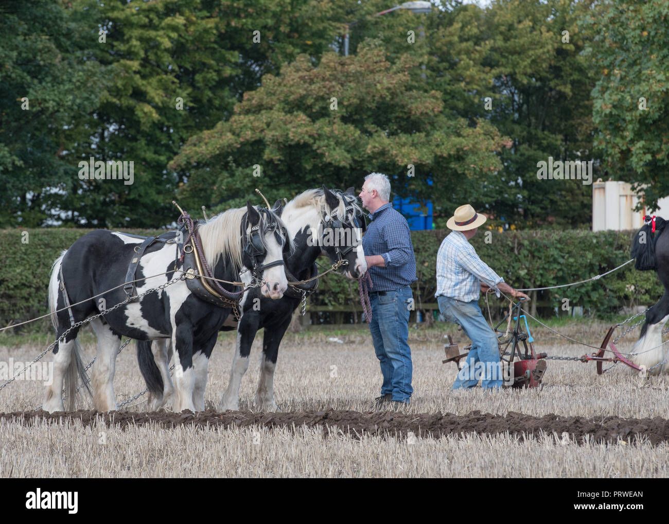 Cheshire Horse Ploughing Match 2018 - Stock Image