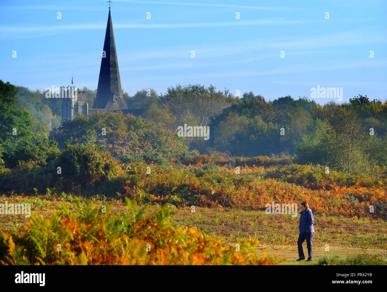 Chailey, East Sussex. 5th October 2018. UK Weather: Bright autumnal morning on Chailey Common, East Sussex. ©Peter Cripps/Alamy Live News - Stock Image