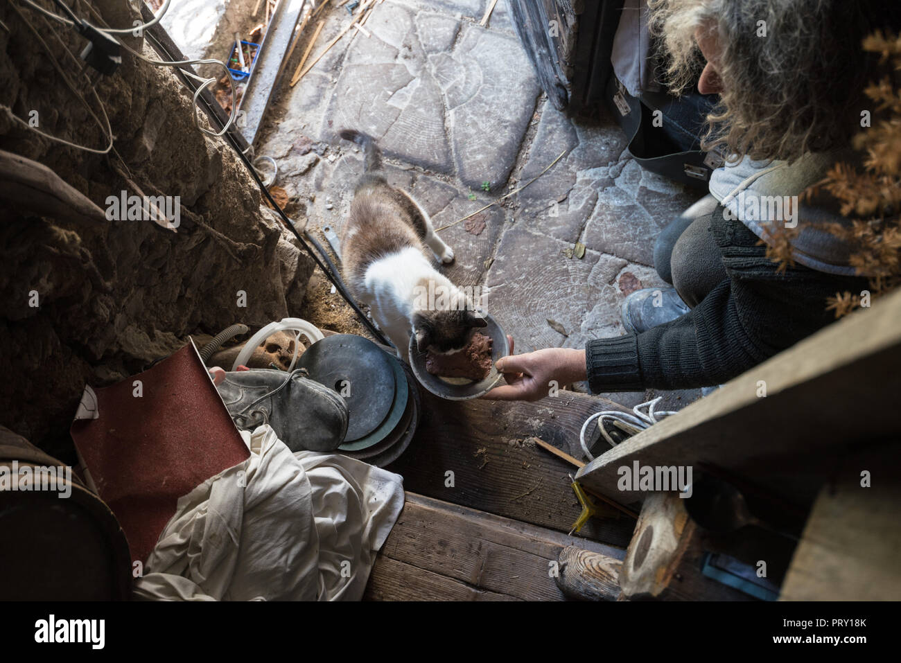High angle view of old man with unkempt long gray hair feeding cat by the door in old messy house. - Stock Image
