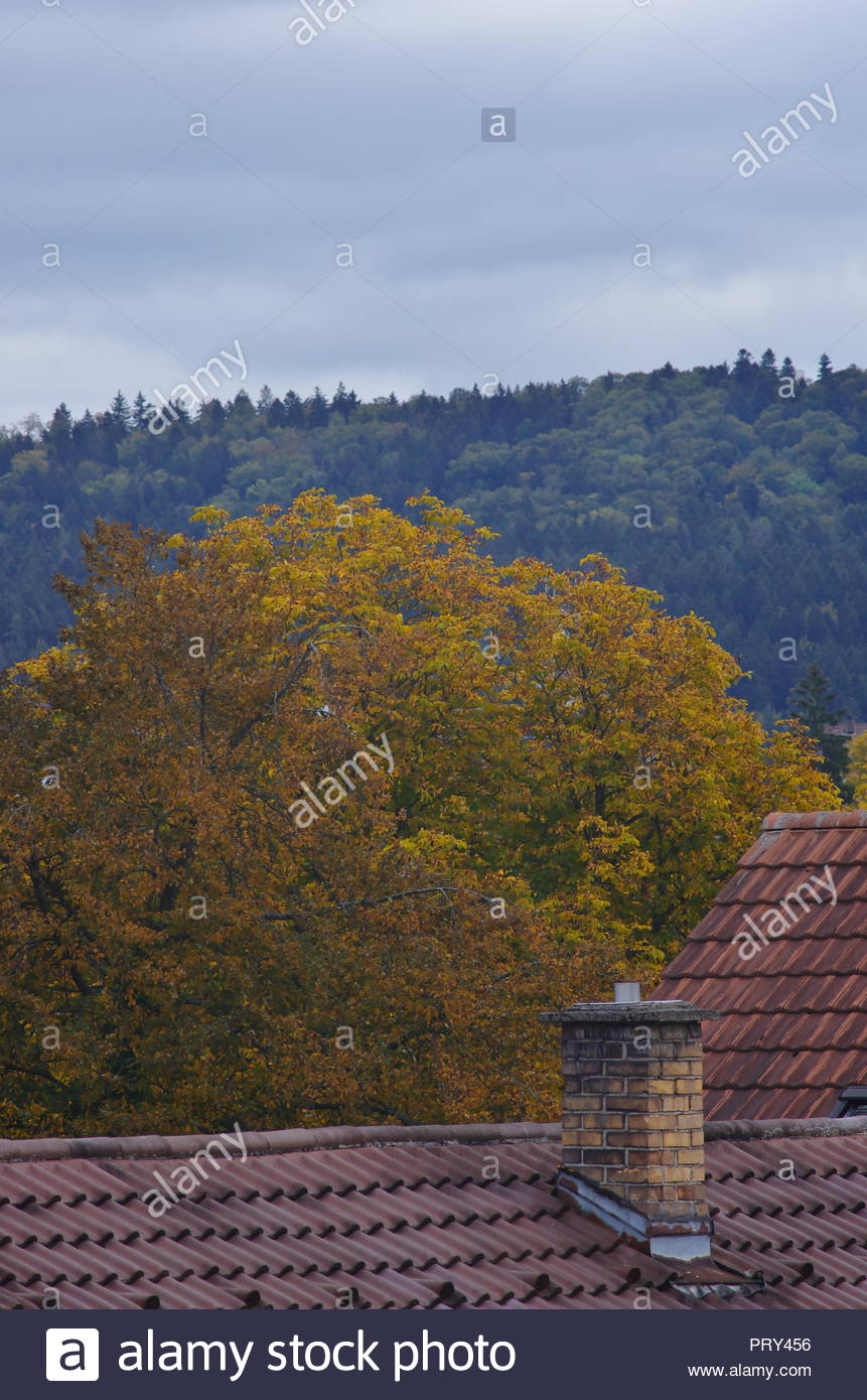 a city landscape with houses and trees, with nature a city landscape with houses and trees, with nature - Stock Image