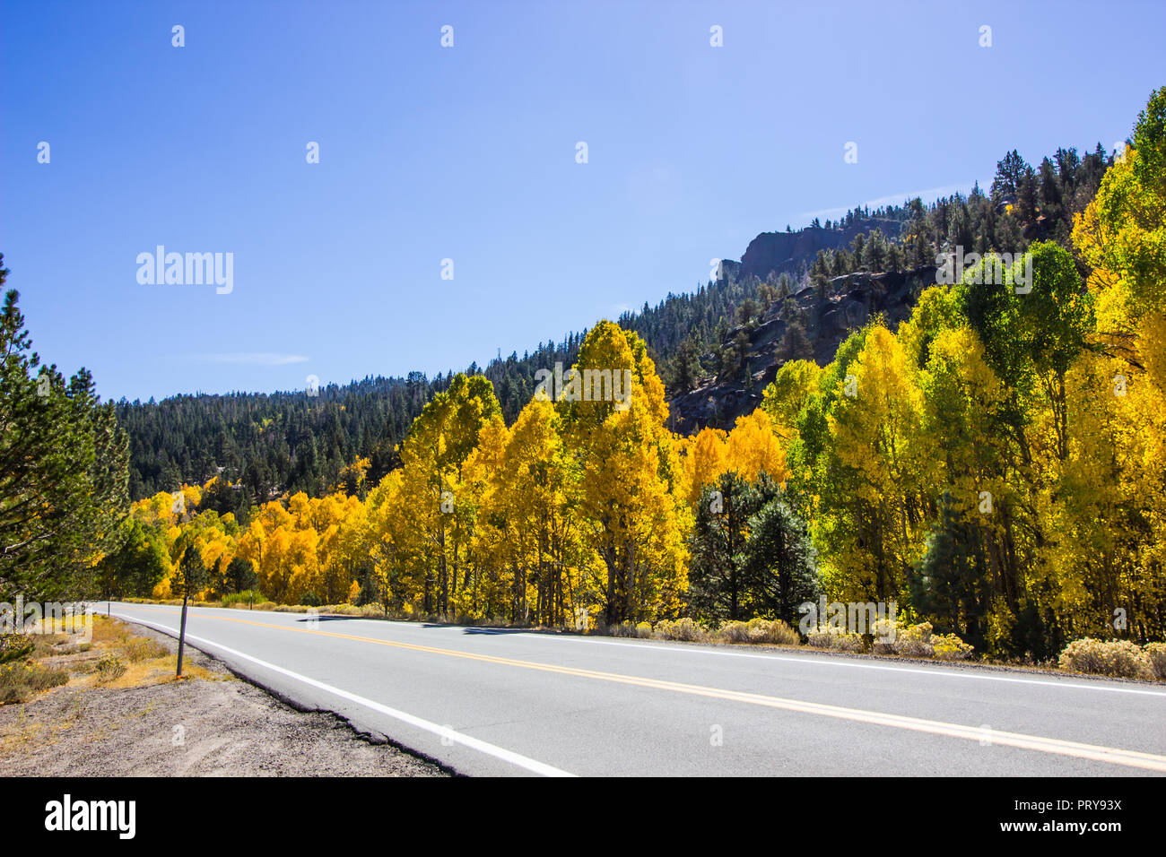 Changing Colors Of Fall Along Mountain Highway - Stock Image