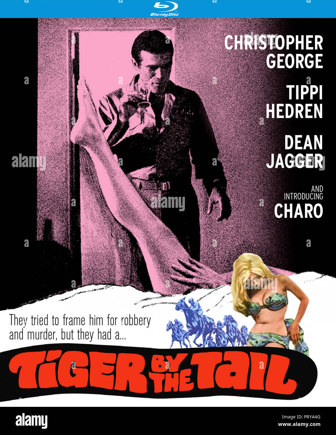 Prod DB © United Pictures Corporation / DR TIGER BY THE TAIL de R.G. Springsteen 1970 USA jaquette du Blu-ray americain Christopher George Tippi Hedre - Stock Image