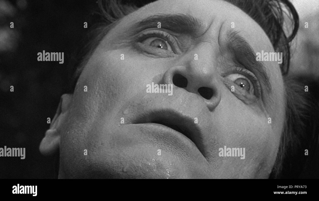 Prod DB © Metro-Goldwyn-Mayer British Studios / DR LE VILLAGE DES DAMNES VILLAGE OF THE DAMNED de Wolf Rilla 1960 GB Thomas Heathcote. fantastique; fa - Stock Image