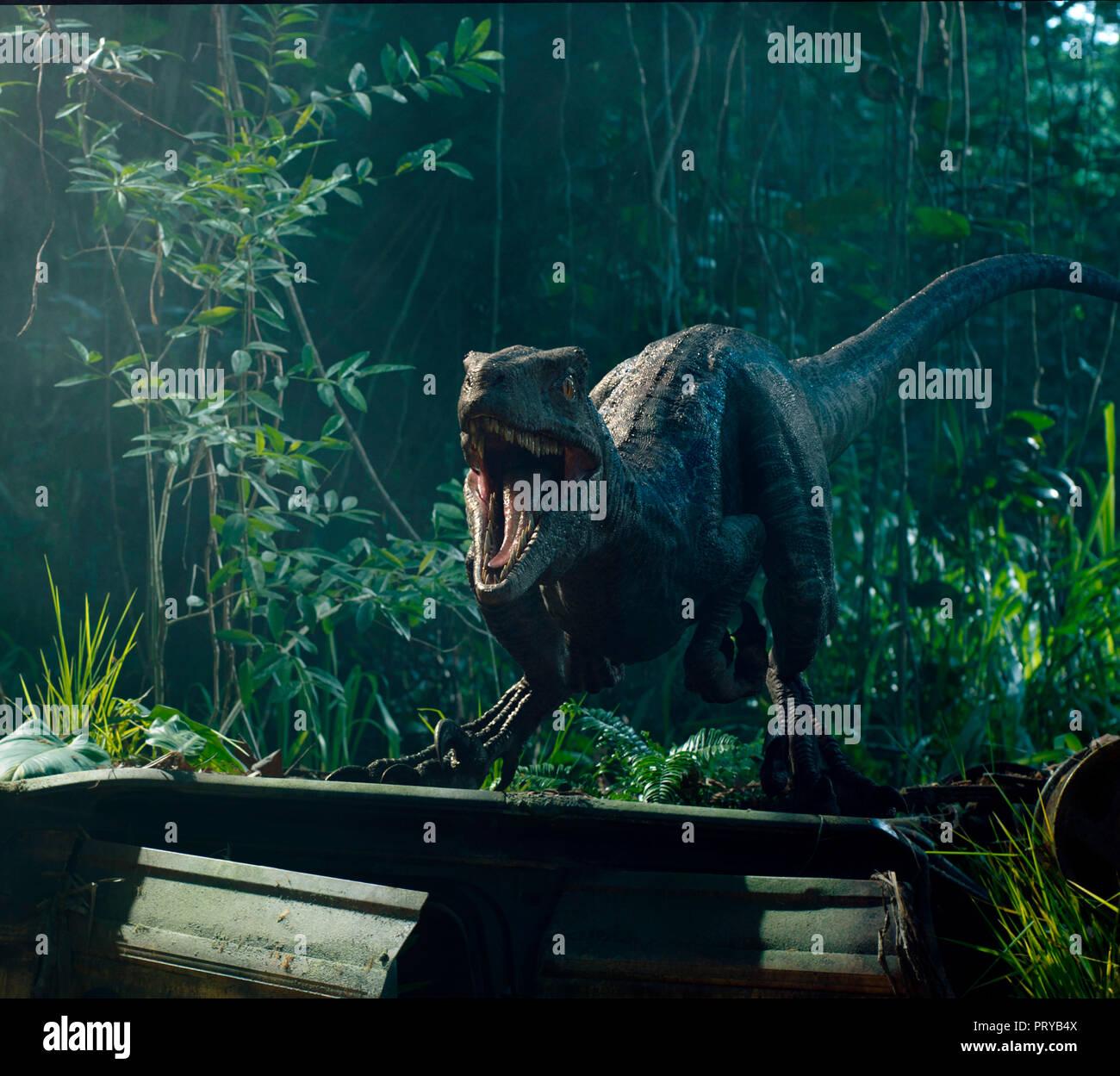 Prod DB © Universal Pictures - Amblin Entertainment - Legendary Entertainment - Apaches Entertainment / DR JURASSIC WORLD: FALLEN KINGDOM de J.A. Bayo Stock Photo