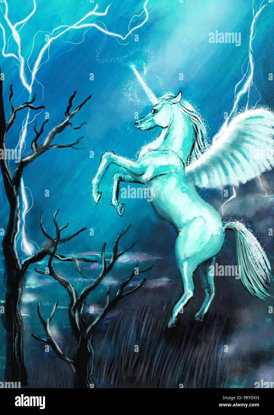 Unicorn illustration Stock Photo