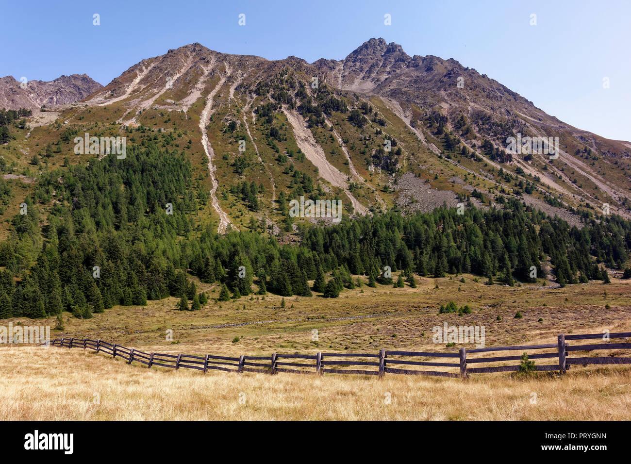 Biotope Plamorter moss, moor, Reschenpass, Vinschgau, South Tyrol, Italy - Stock Image