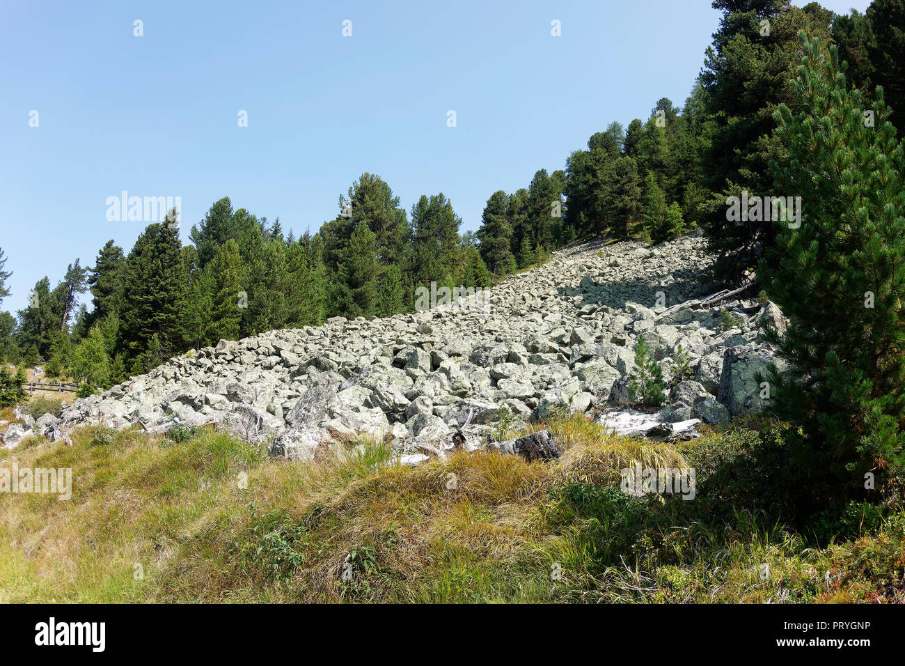 Departing landslide, Plamorter moss biotope, Reschenpass, Vinschgau, South Tyrol, Italy - Stock Image