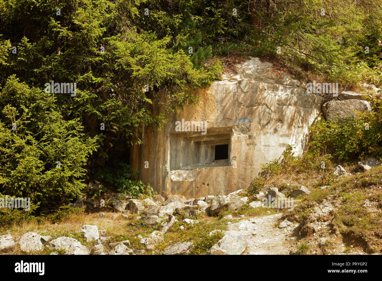 Bunker, defence system Plamort, Second World War, to protect Italy from Nazi Germany, near the Plamorter moss biotope - Stock Image