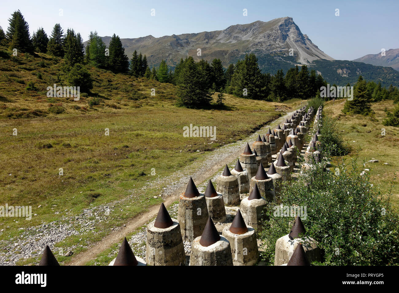 Tank barrier, defence system Plamort, World War II, to protect Italy from Nazi Germany, near Biotop Plamorter moss, raised bog - Stock Image