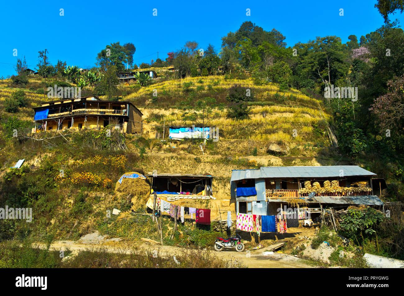 Terrace fields and farmstead near Nagarkot, Bhaktapur District, Kathmandu Valley, Nepal - Stock Image