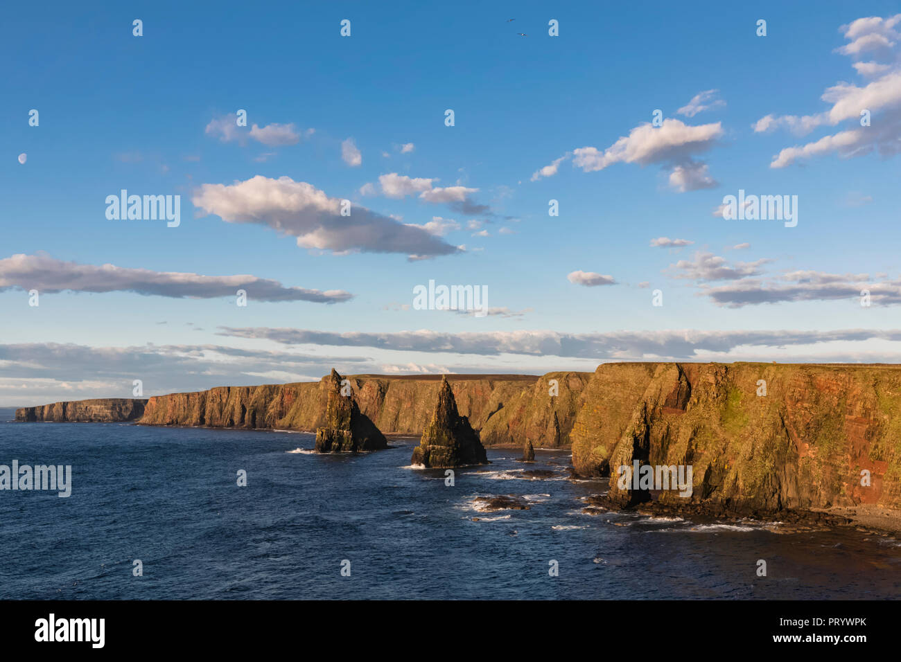 UK, Scotland, Caithness, Coast of Duncansby Head, Duncansby Stacks - Stock Image