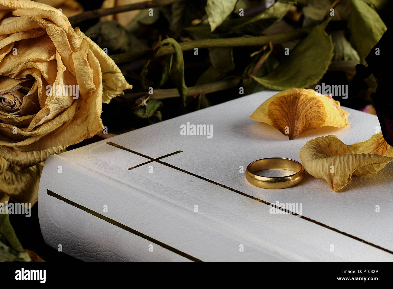 White Holy Bible, one wedding ring and dry roses. Beautiful but touching conceptual image for death, marriage, divorce and wedding vows. - Stock Image