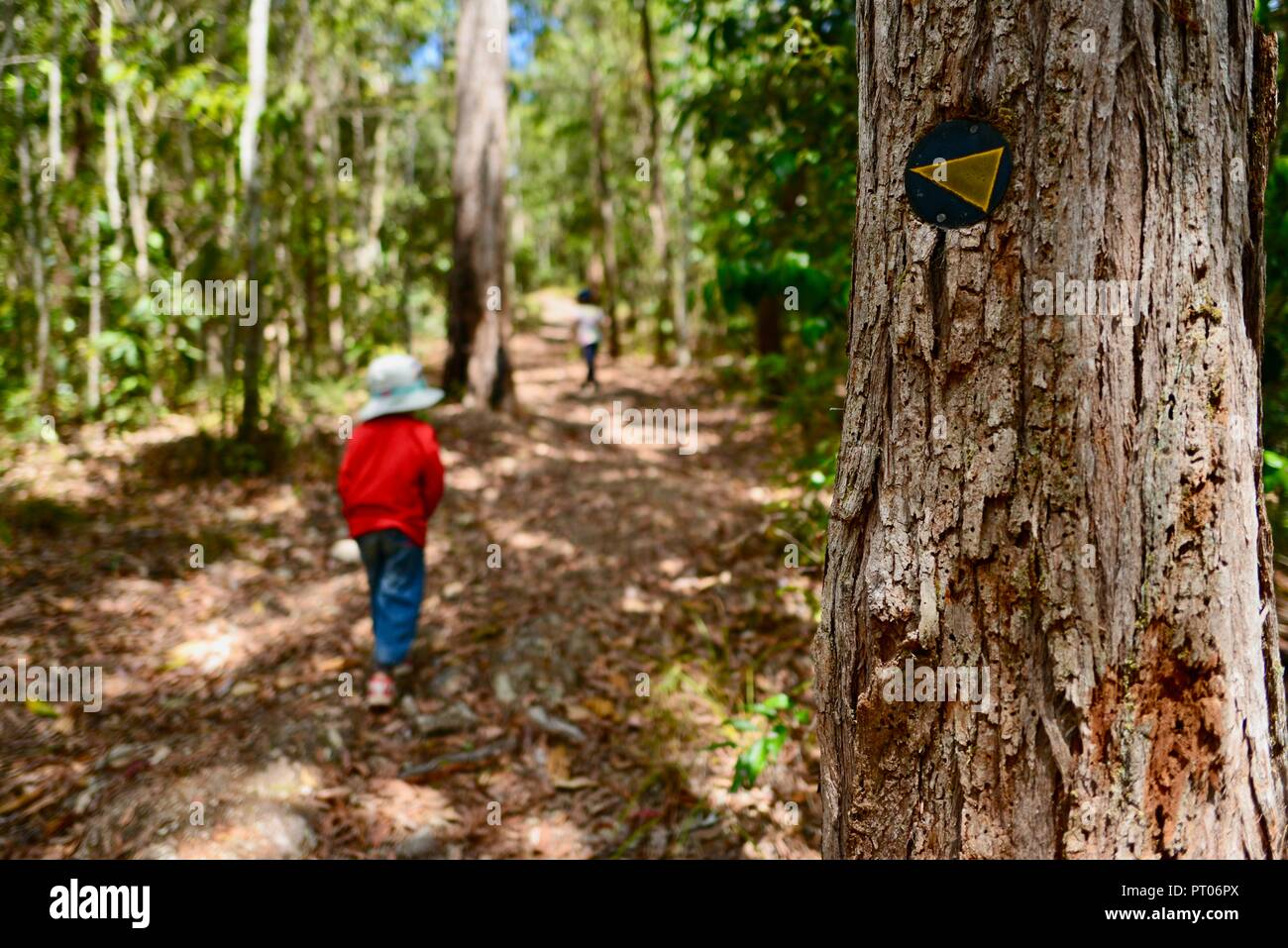Kids walking through the woods, Dalrymple gap, QLD, Australia Stock Photo