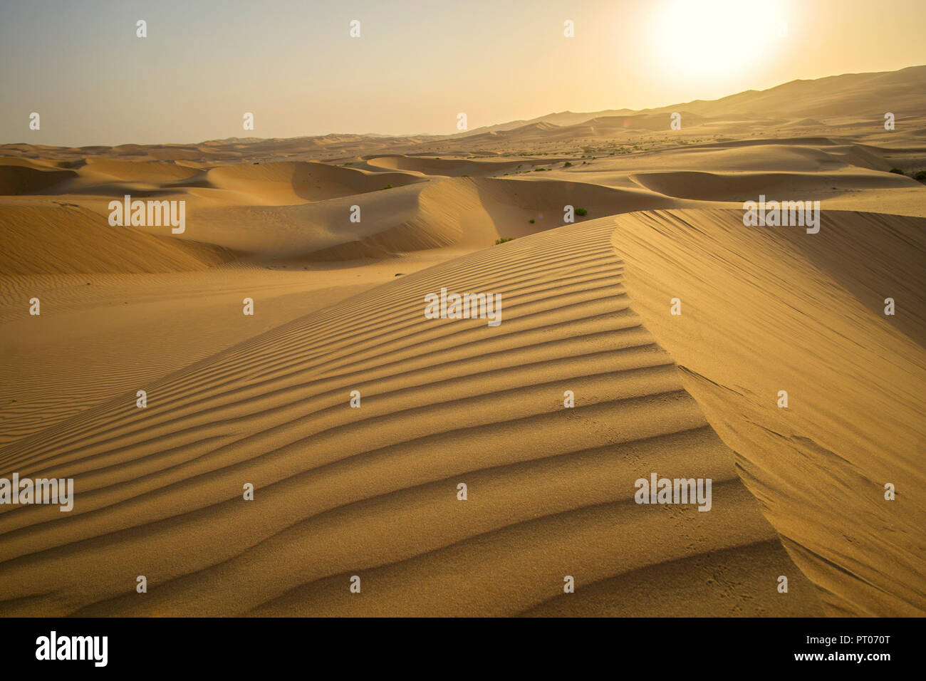 Beautiful Rub al Khali desert at sunrise - Stock Image