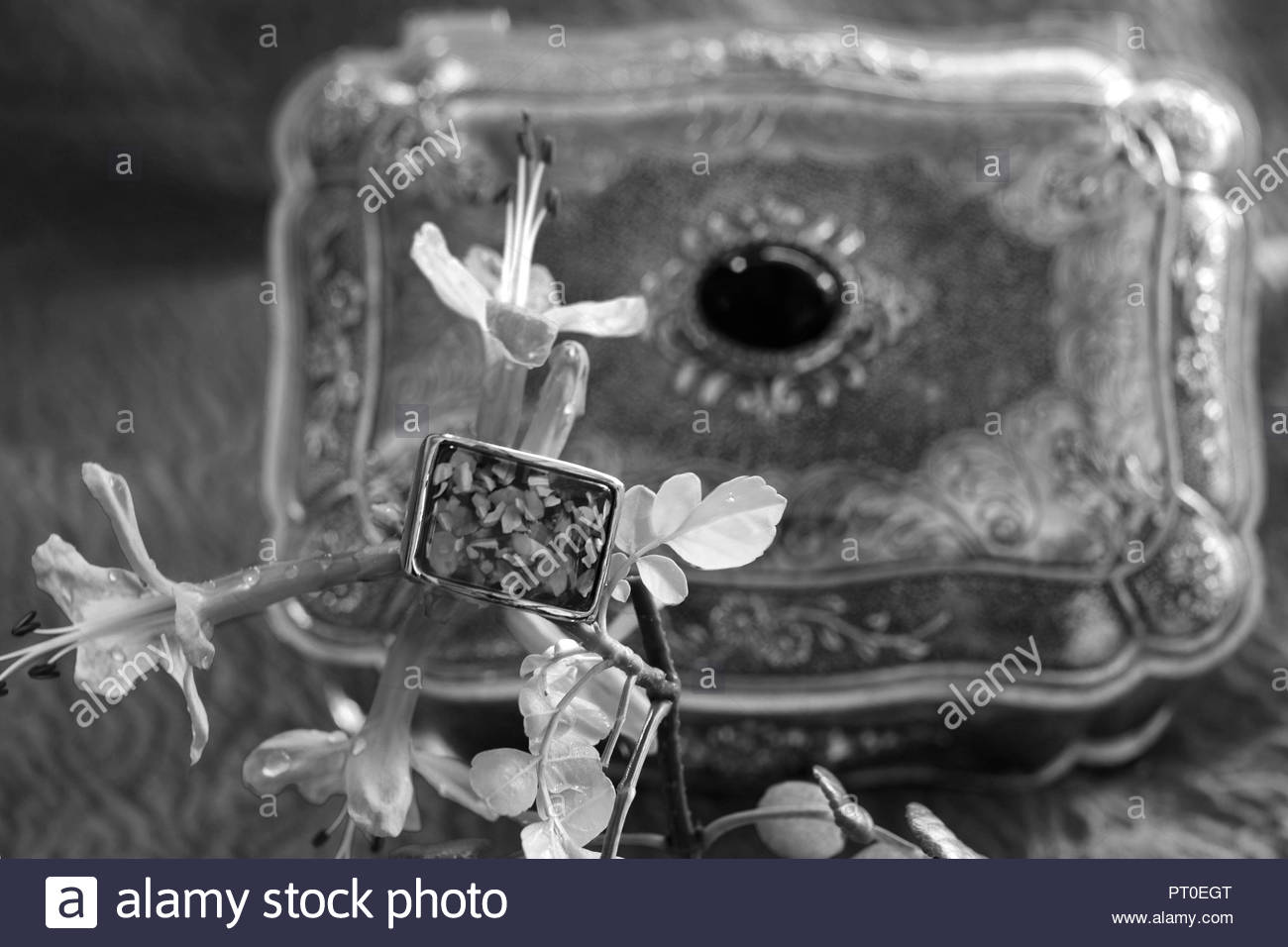 ARTISTIC COMPOSITION OF WOMEN'S JEWELLERY AND STYLE, ATHENS, GREECE - Stock Image