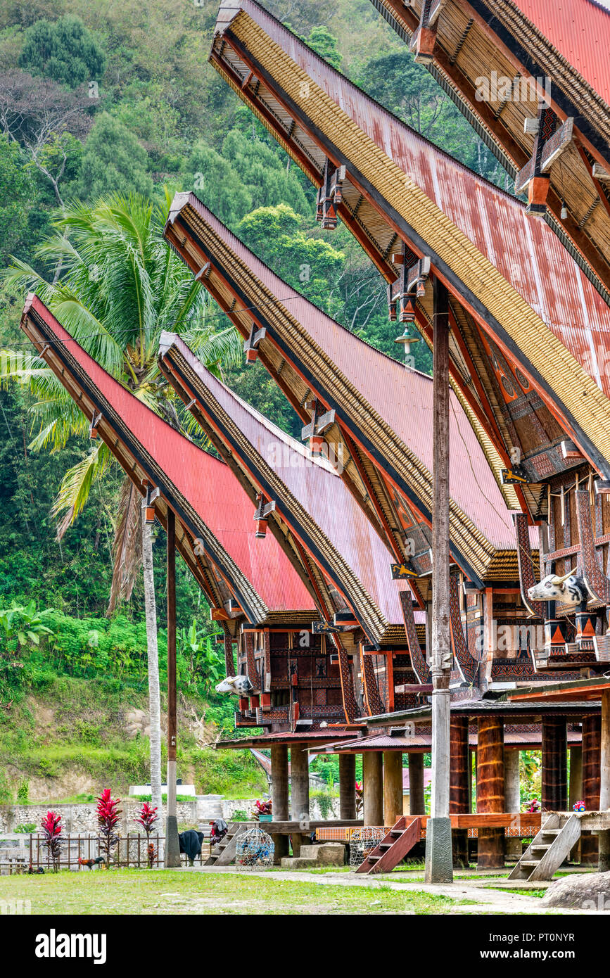 Traditional Toraja village, Rantepao, Tana Toraja, Sulawesi, Indonesia - Stock Image