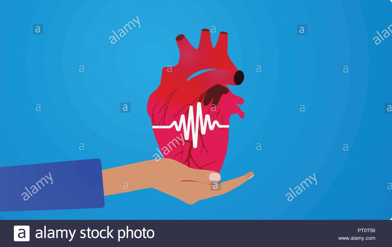 Human heart on hand  on the blue - Stock Image