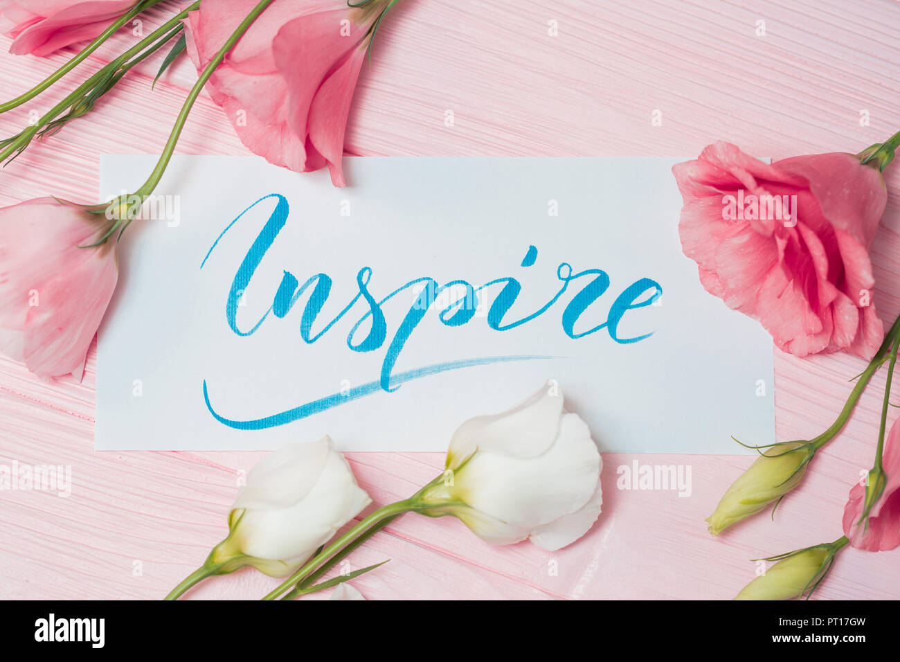 Inspire text. Font of lettering motivational word on white canvas ...