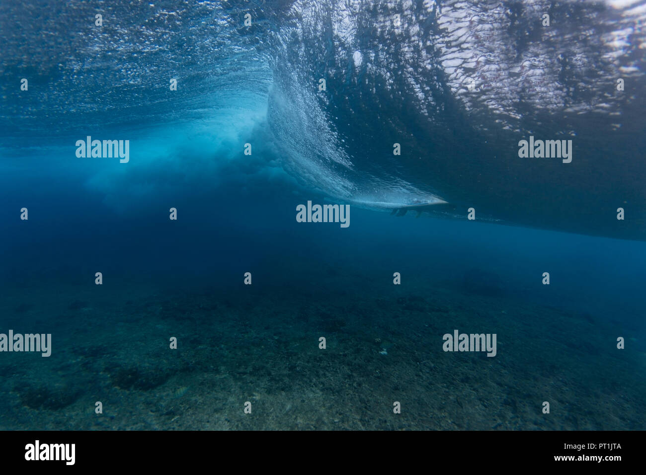 Maledives, Ocean, underwater shot, wave - Stock Image