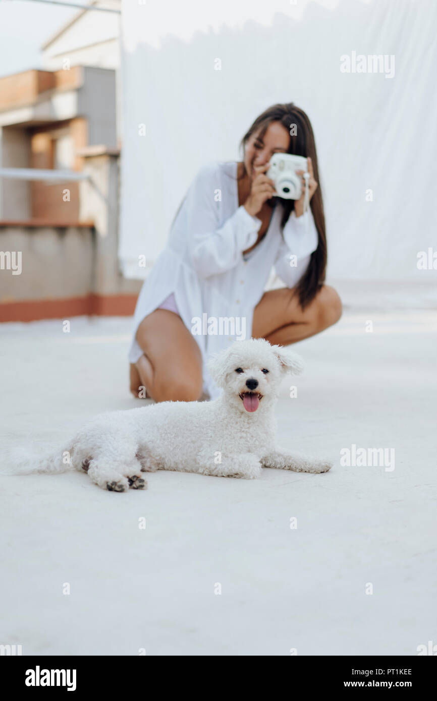 Portrait of white dog lying on roof terrace while young woman in the background taking photo - Stock Image