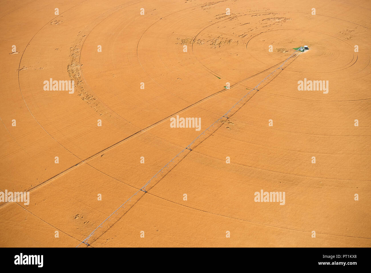 USA, Aerial of irrigated wheat field in Eastern Colorado, USA - Stock Image