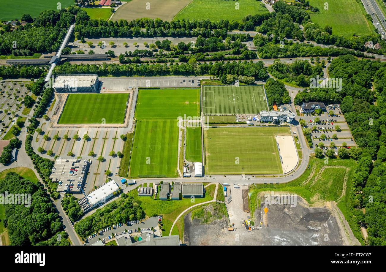 Training grounds of the S04 Schalke, Schalker Feld, Gelsenkirchen, Ruhr area, North Rhine-Westphalia, Germany, Europe - Stock Image