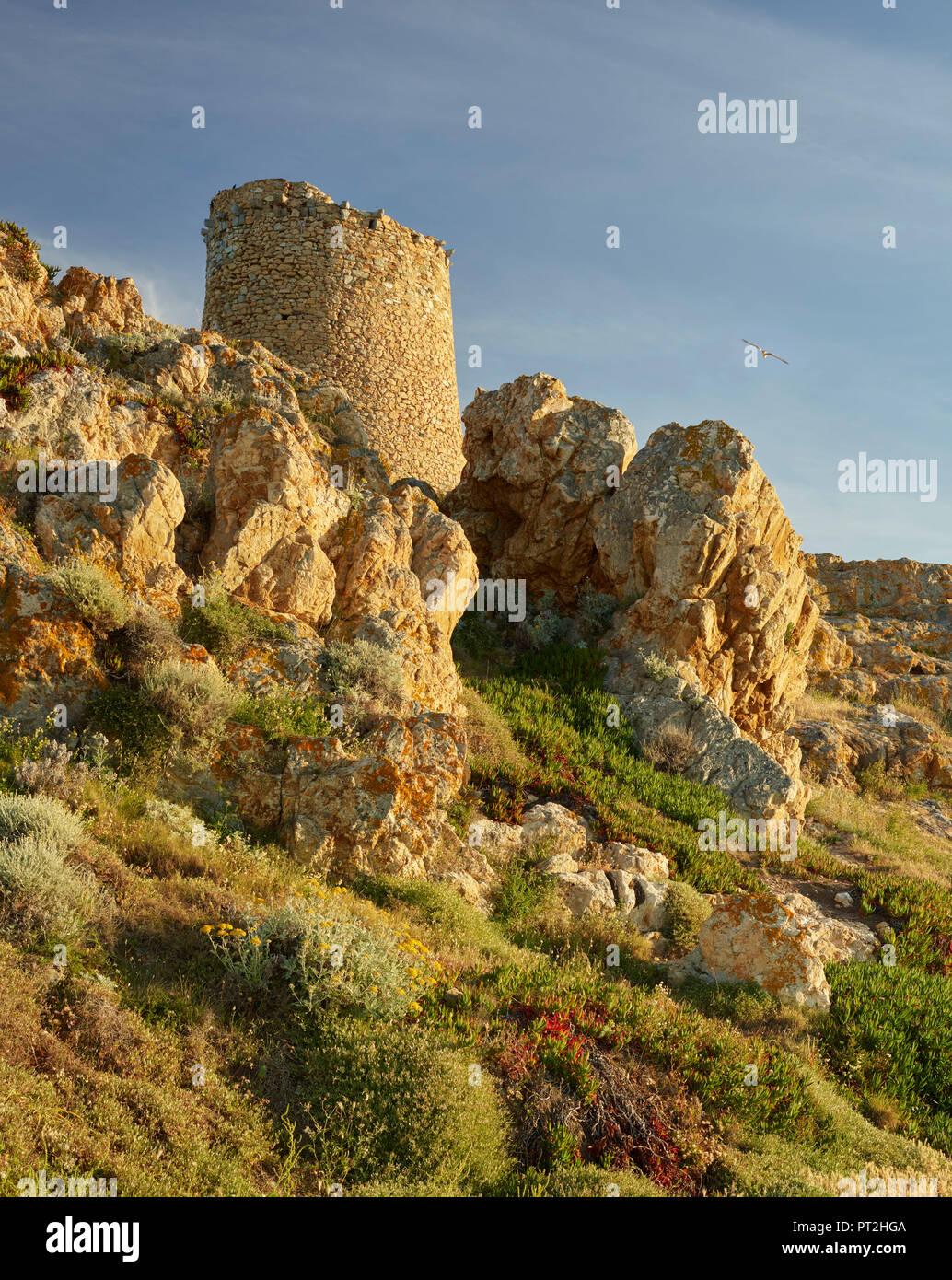 La Tour Génoise, L'Ile Rousse, Corsica, France - Stock Image