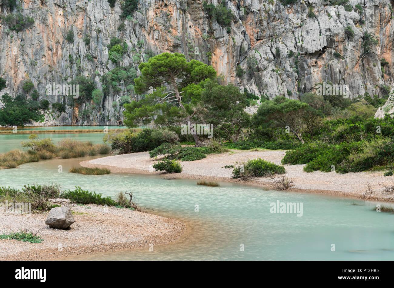 Torrent de Pareis, Sa Calobra, Tramuntana, Mallorca, Balearic Islands, Spain - Stock Image