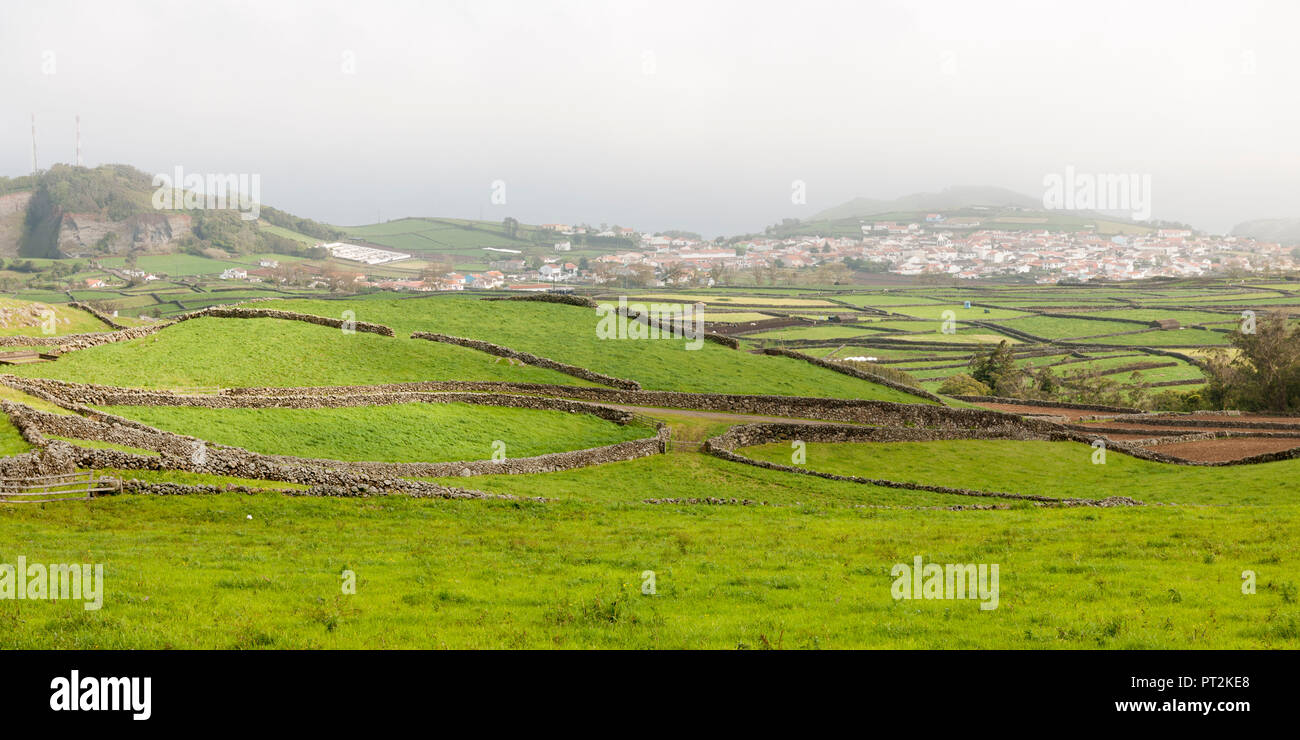 green meadows divided by volcanic stone walls patterned into cattle pastures - Stock Image
