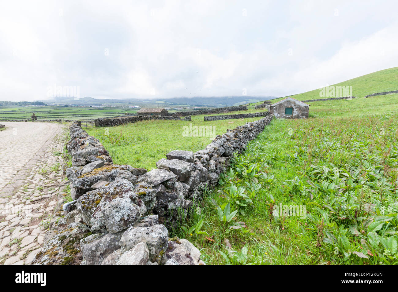 green pastures with volcanic stone wall and stables on Terceira - Stock Image