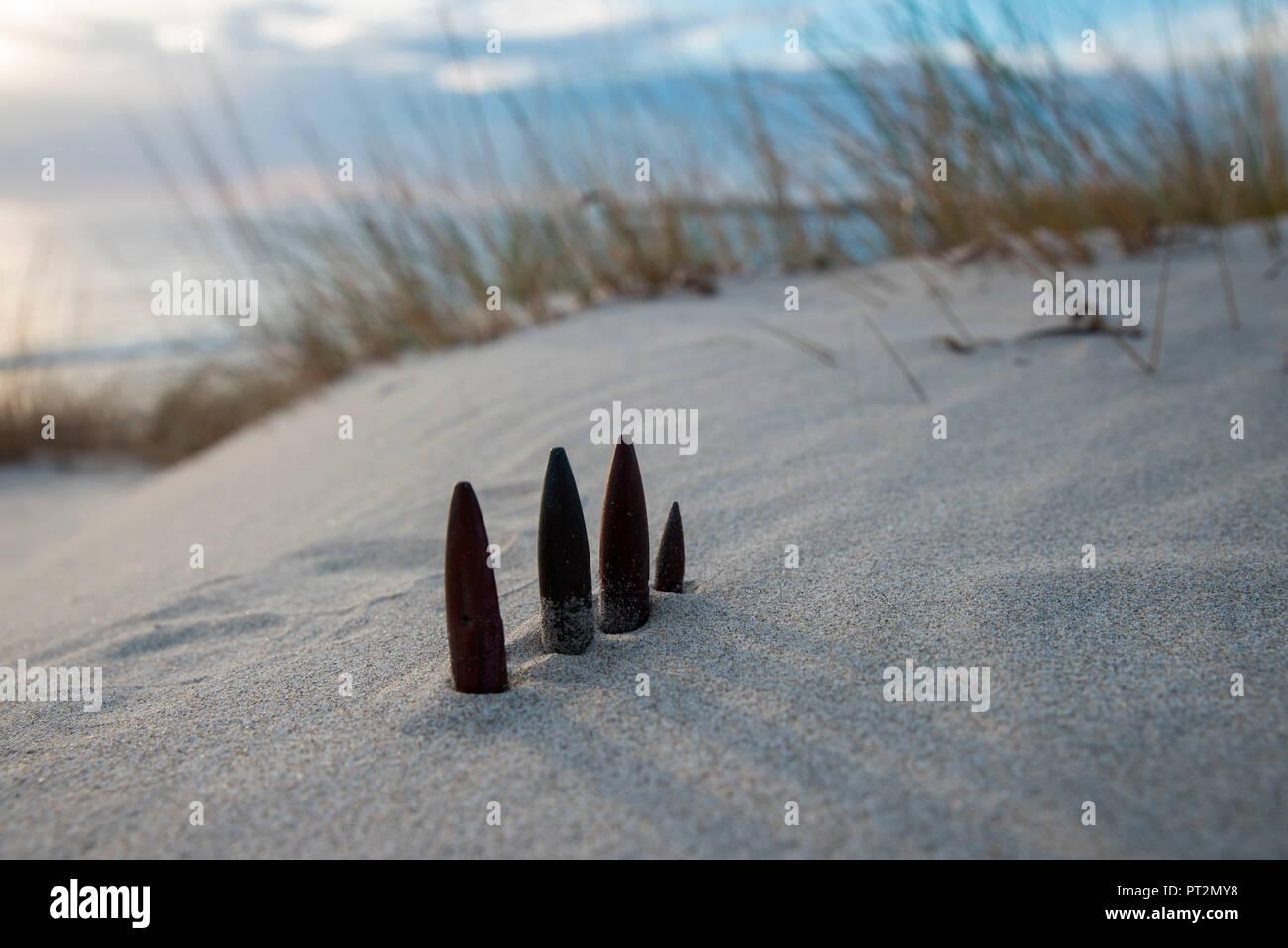 bullets in the military base, Teulada, Cagliari Province, Sardinia, Italy, Europe, - Stock Image