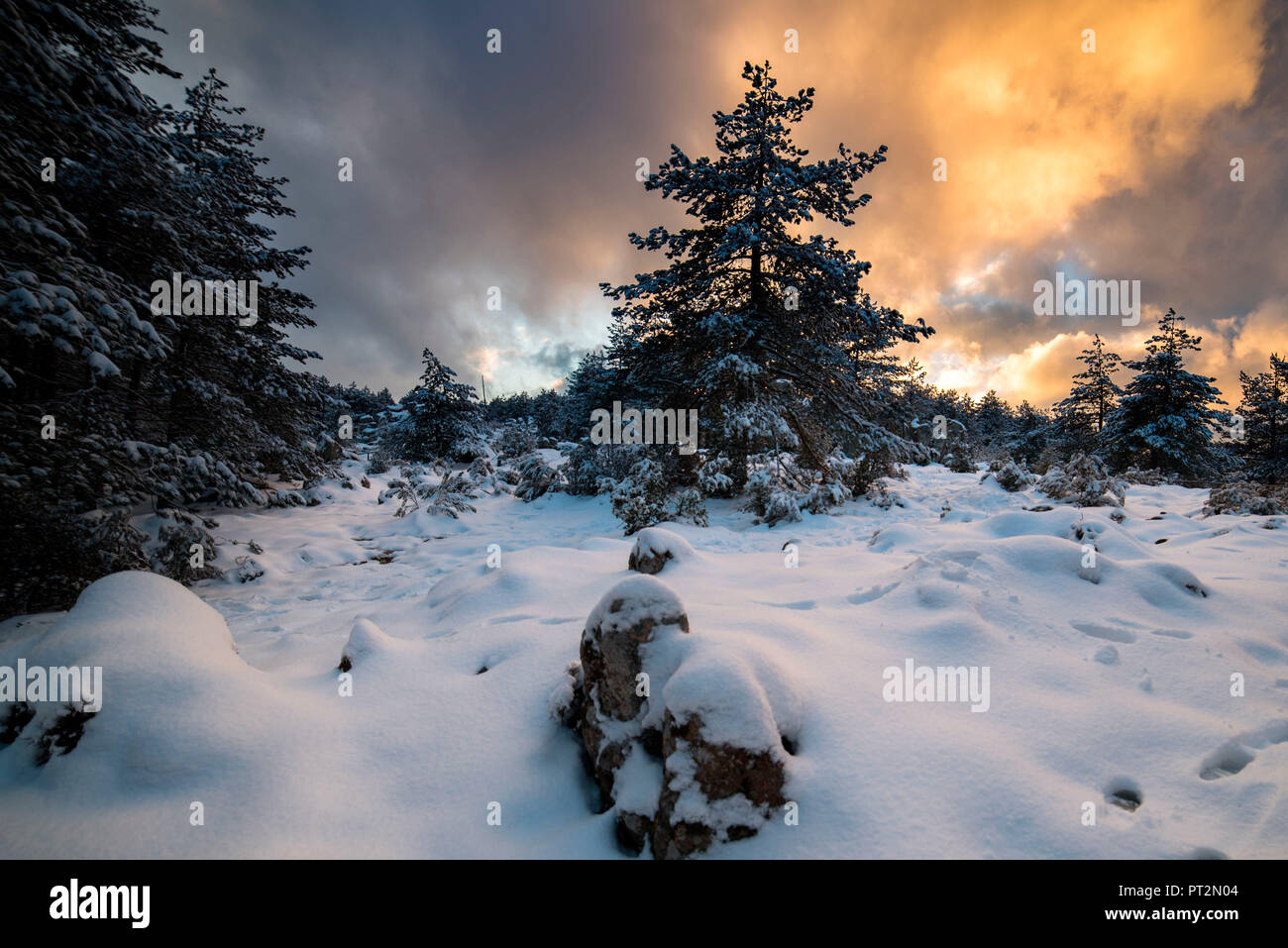 Snow in Limbara Mountain, Olbia Tempio Province, sardinia, italy, europe, - Stock Image