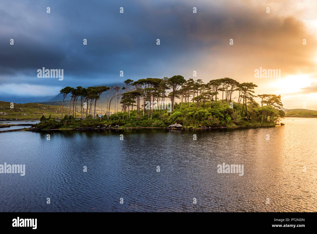 Galway province
