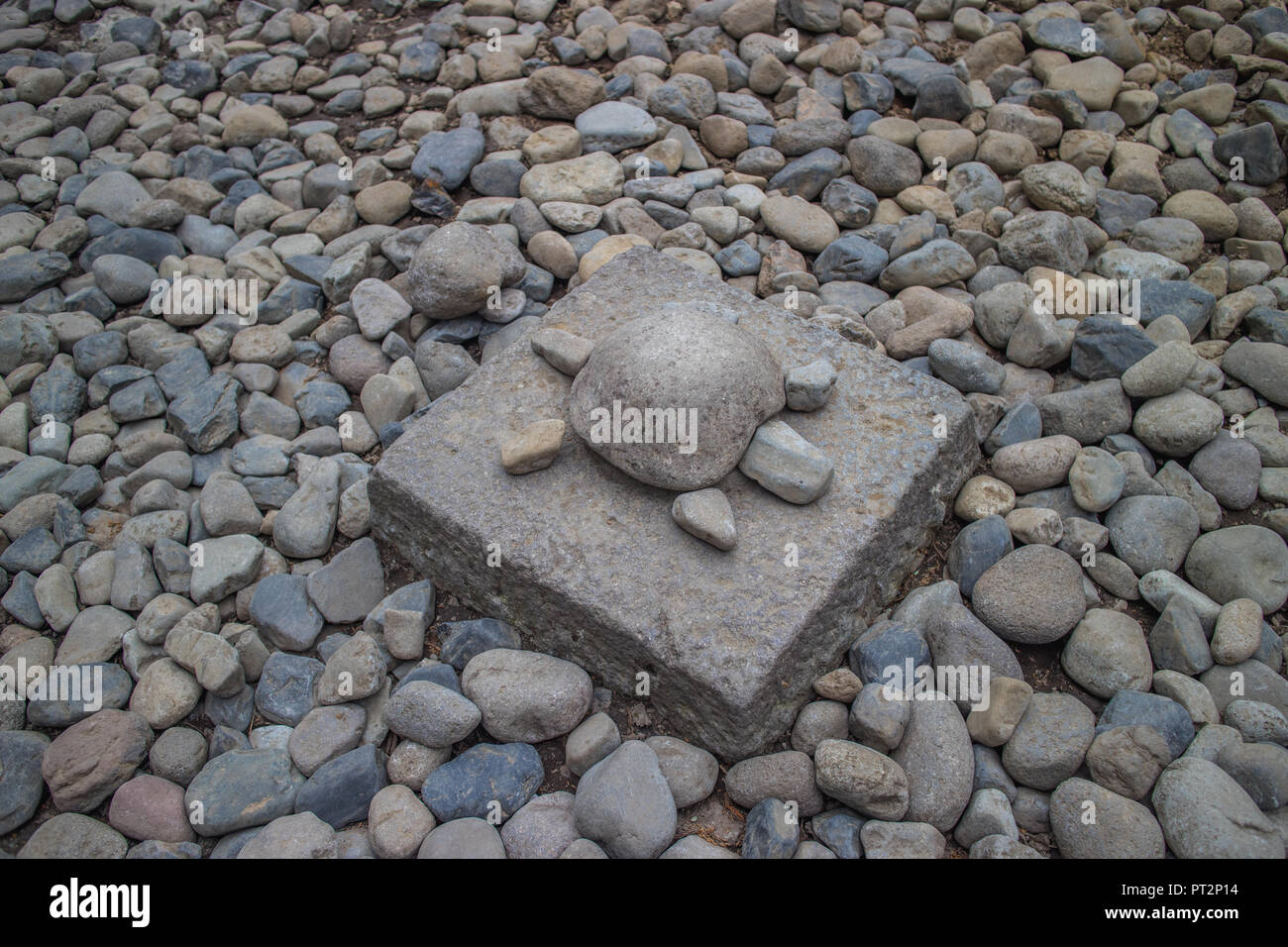Una tortuga de piedra - Stock Image