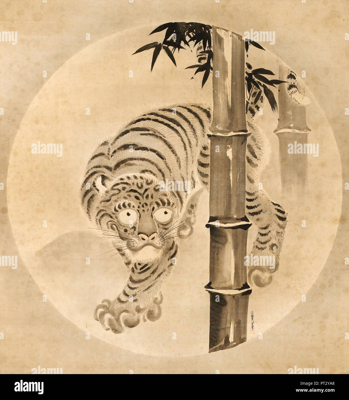 Kano Tsunenobu, Tiger Emerging from Bamboo, Circa 1704-1713, Ink and color on paper, Minneapolis Institute of Arts, USA. - Stock Image