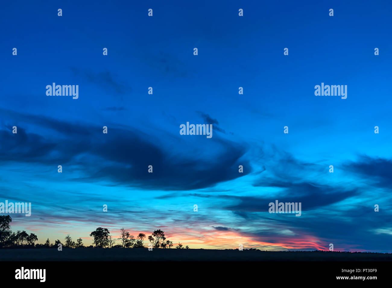 Tree silouettes with dark clouds at sunset, Bavaria, Germany - Stock Image