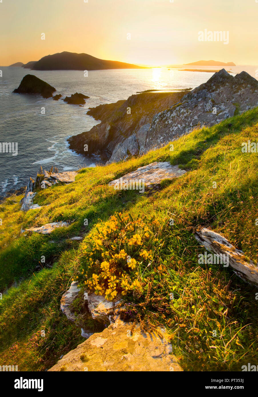 Dunmore Head, View towards Blasket Islands, which is the most westerly point of europe, Along SLea Head Drive between Dinle and Dunquin, on Dingle Peninsula, western Ireland, Stock Photo
