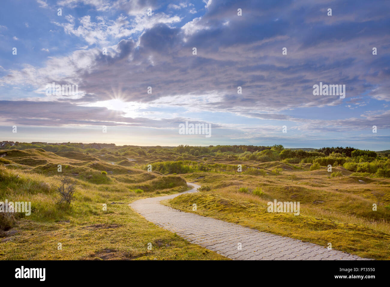 Trail winding through Dunes on the island of Baltrum, just a trail for walking, for being in that landscape Stock Photo