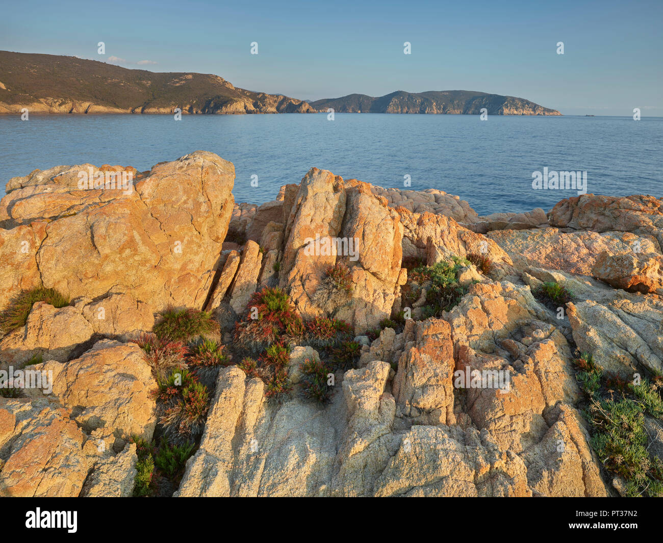 Evening mood at Capu Rossu, D'Arone, Corsica, France - Stock Image