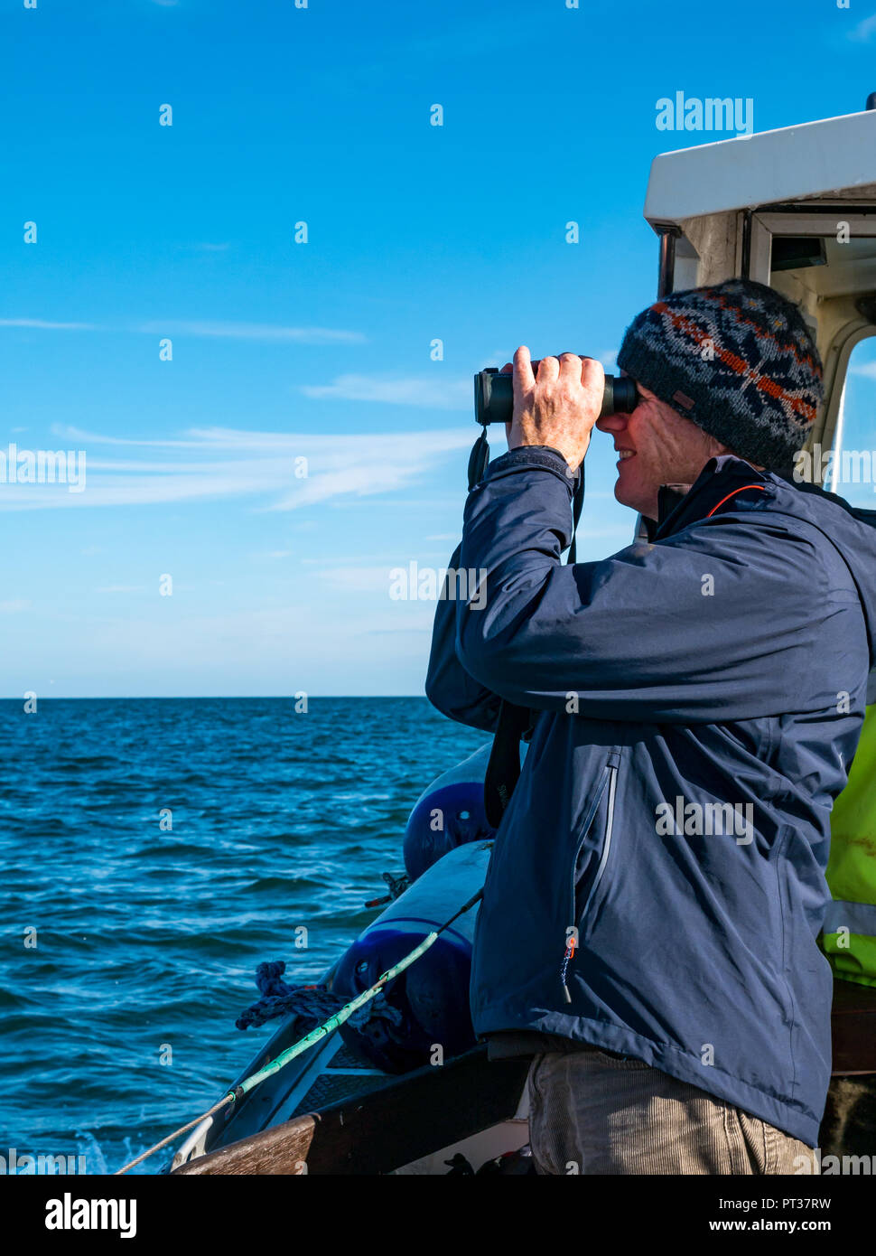 Man looking through binoculars on boat in Firth of Forth, East Lothian, Scotland, UK - Stock Image