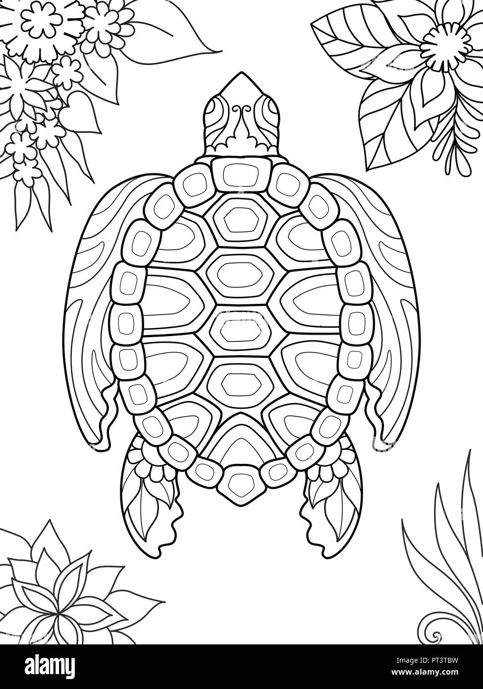 Simple line art of turtle swimming for coloring book page on smartphone app. Vector illustration - Stock Image