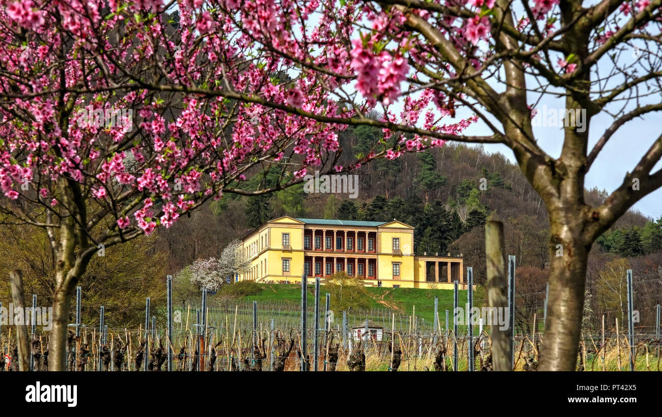 Villa Ludwigshöhe near Edenkoben, Palatinate, Palatinate Wine Route, Rhineland-Palatinate, Germany Stock Photo