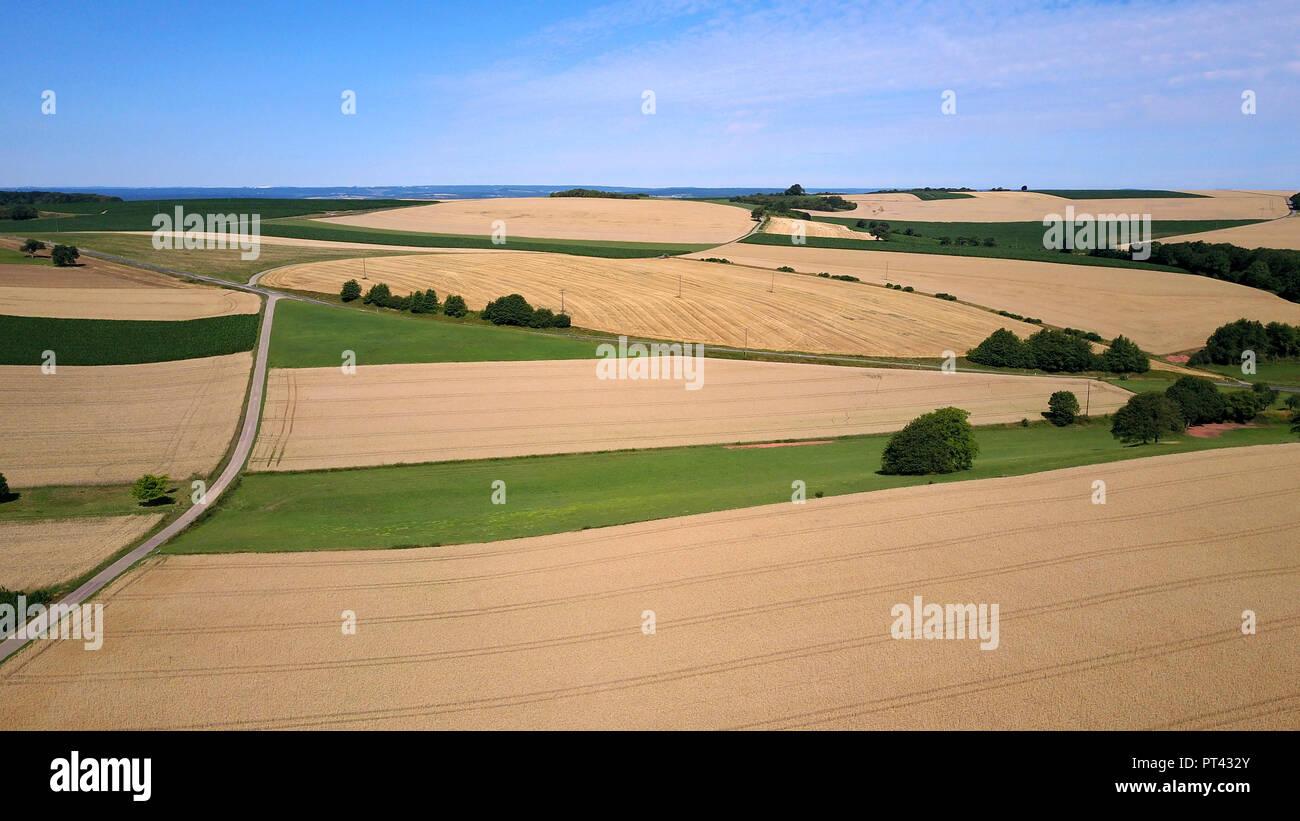 Field landscape near Merzkirchen, Saargau, Trier-Saarburg, Rhineland-Palatinate, Germany Stock Photo