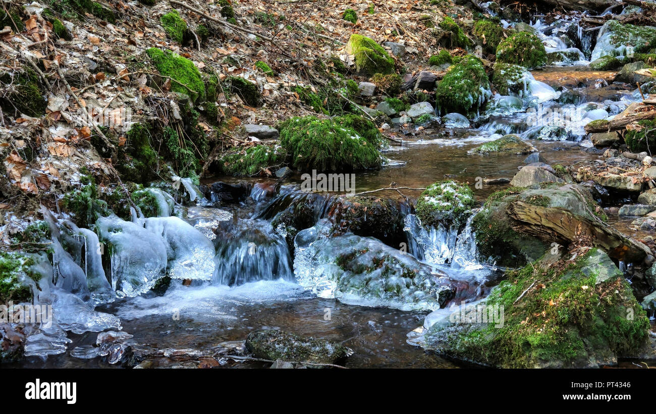 Ice formation on a small forest stream, Wenichbach in the Tabener jungle, Taben-Rodt, Saar Valley, Rhineland-Palatinate - Stock Image