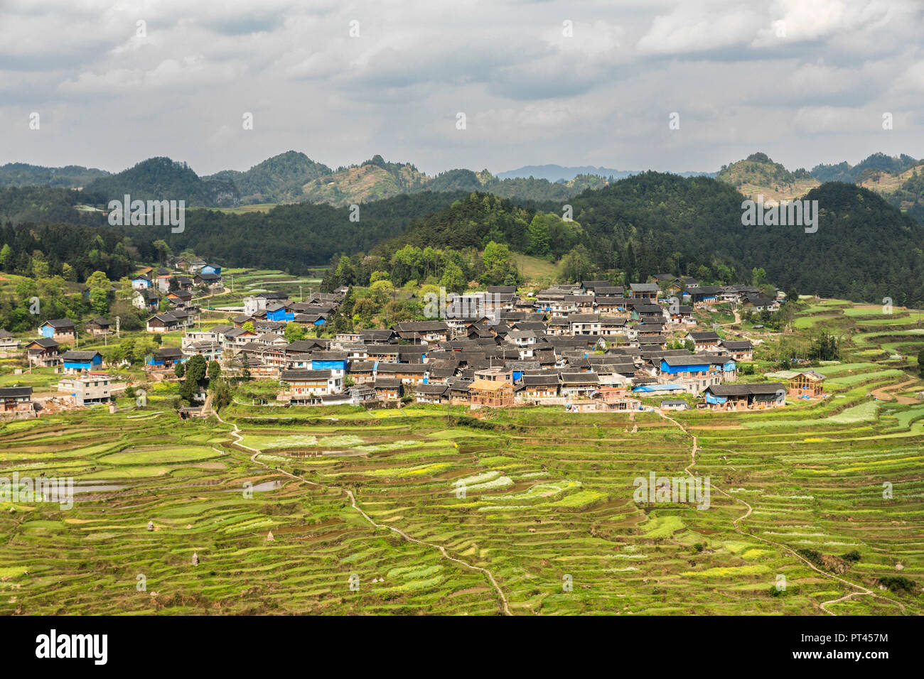 Rice terraces, Gaoyao, Guizhou, China Stock Photo