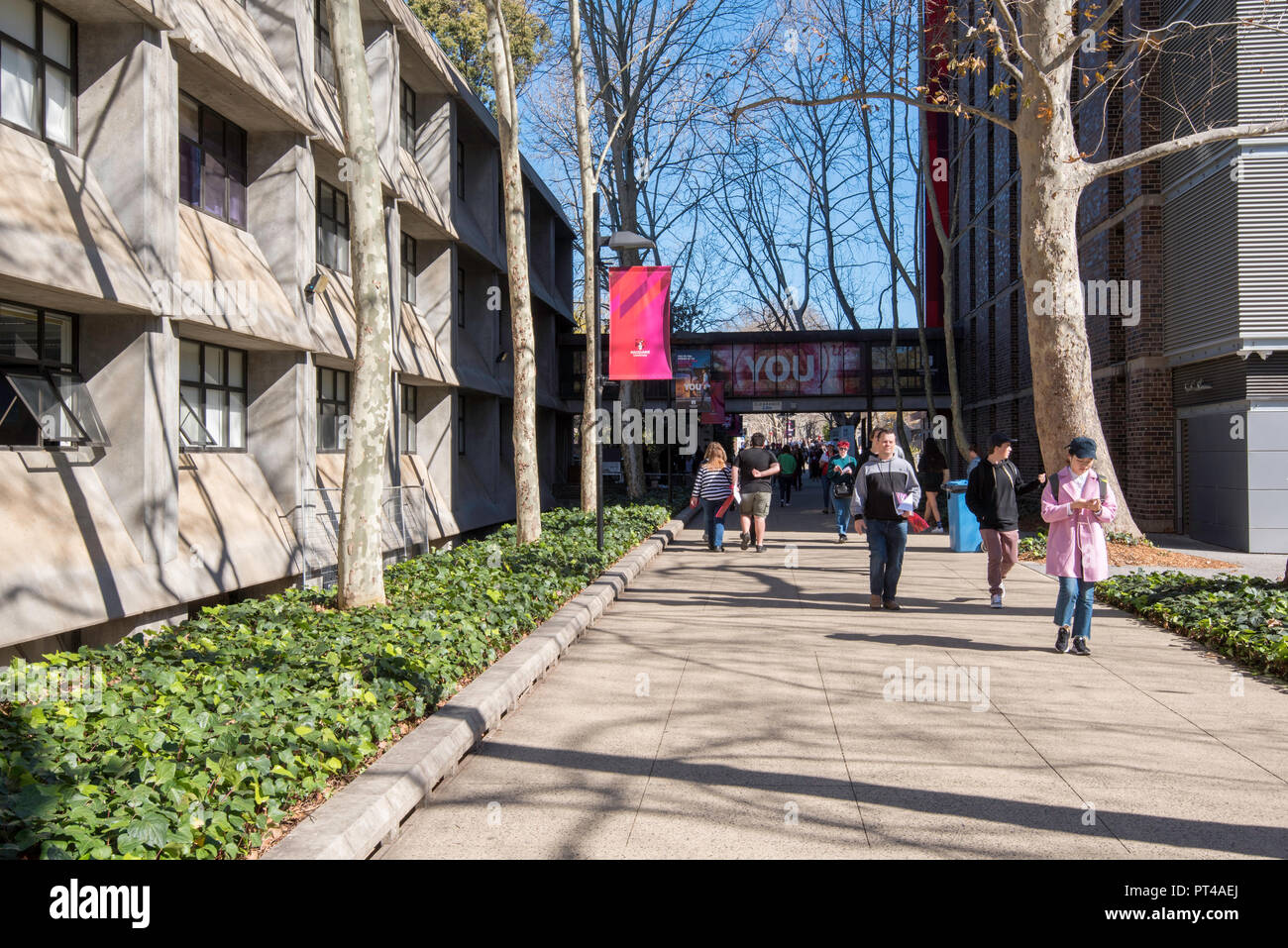 People walking along Wally's Walk, named after architect and Uni planner Dr Walter V Abraham, past the brutalist buildings of Macquarie  University - Stock Image