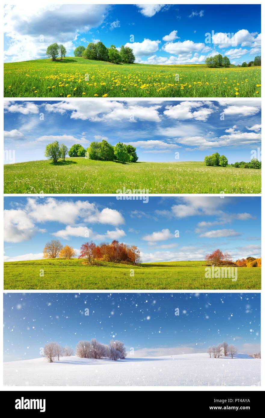 4 Seasons Landscape